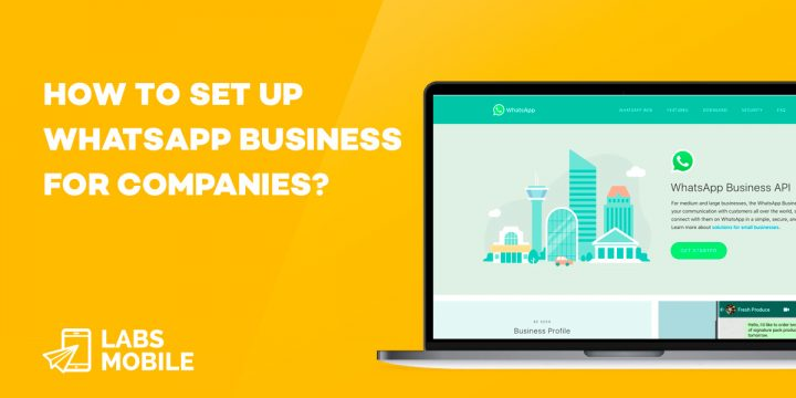 Whatsapp Business for companies