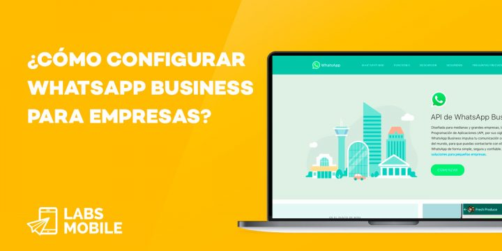 Whasapp Business Empresas